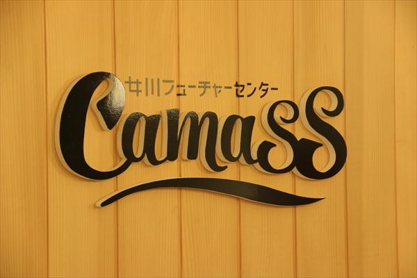 camass%e7%9c%8b%e6%9d%bf_600